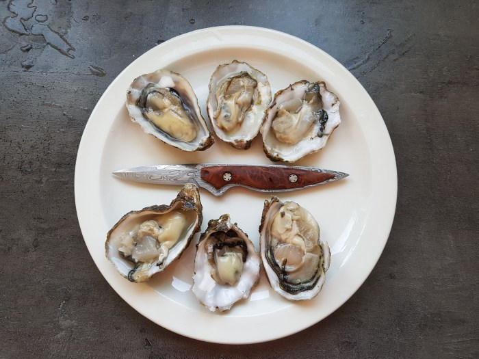 Zeeuwse Oesters: Oysters from Zeeland with a Jacomina oyster knife.