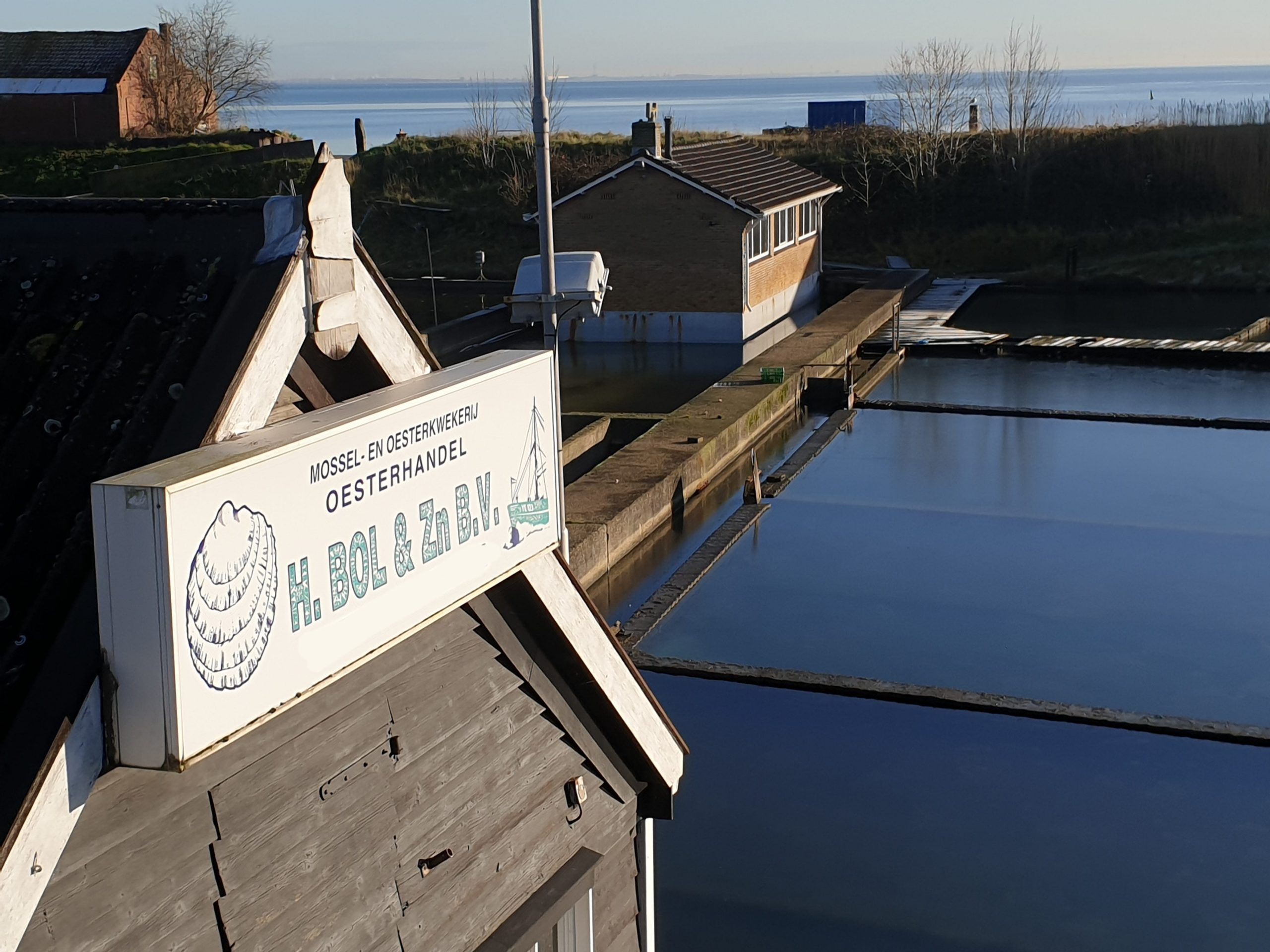 H.Bol & Zn. B.V. Oesterhandel is the family oyster farming company. It's located in Yerseke, the Netherlands.